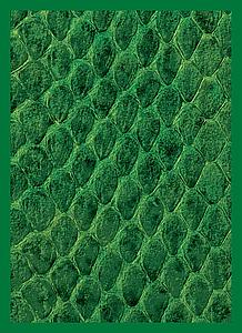 Dragonhide (Green) Standard Card Sleeves (67mm x 92mm)