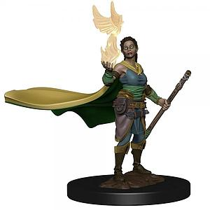 Dungeons & Dragons Icons of the Realms Premium Painted Miniatures: Elf Druid (Female)