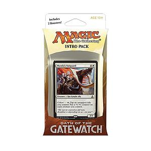 Magic the Gathering: Oath of the Gatewatch - Intro Deck: Desperate Stand