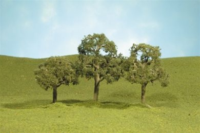 "2""-2.25"" Walnut Trees [4 Pieces] (32107)"