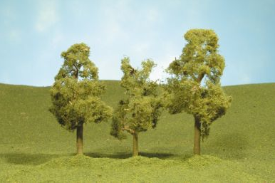 "2.5"" - 2.75"" Sycamore Trees [4 Pieces] (32109)"