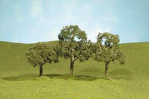 "5"" Walnut Trees [2 Pieces] (32207)"