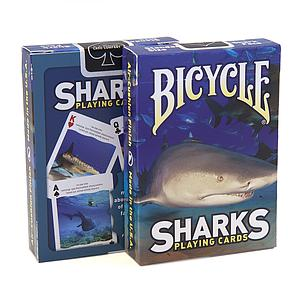 Playing Cards: Sharks