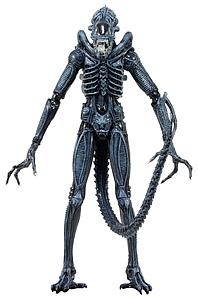 Aliens Series 2: Xenomorph Warrior