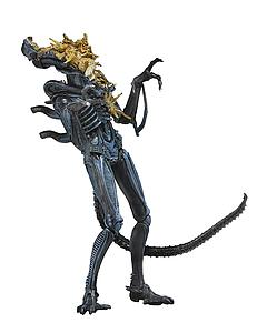 Aliens Series 12: Xenomorph Warrior Blue (Battle Damaged)