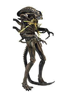 Aliens Series 12: Xenomorph Warrior Brown (Battle Damaged)