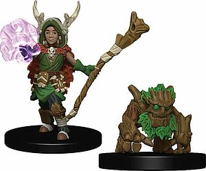 Wardlings Pre-Painted Miniatures: Boy Druid with Tree Companion