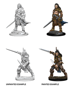 Pathfinder Roleplaying Game Unpainted Miniatures: Human Male Fighter