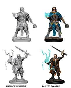 Pathfinder Roleplaying Game Unpainted Miniatures: Human Male Cleric