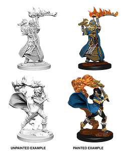 Pathfinder Roleplaying Game Unpainted Miniatures: Human Female Cleric