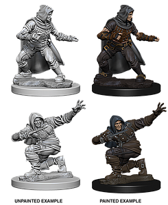 Pathfinder Roleplaying Game Unpainted Miniatures: Human Male Rogue