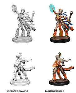 Pathfinder Roleplaying Game Unpainted Miniatures: Human Female Sorcerer