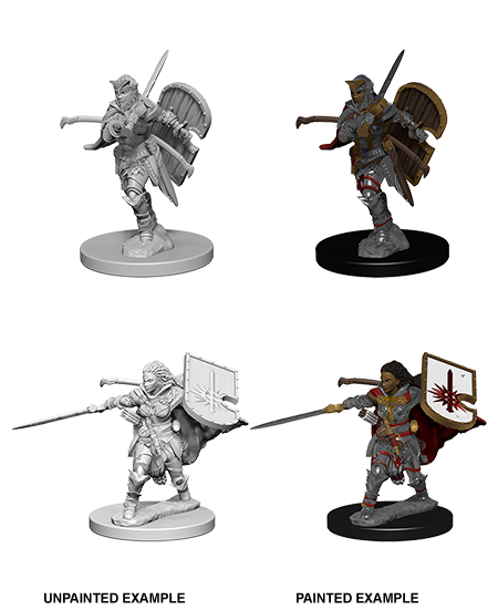 Pathfinder Roleplaying Game Unpainted Miniatures: Human Female Paladin