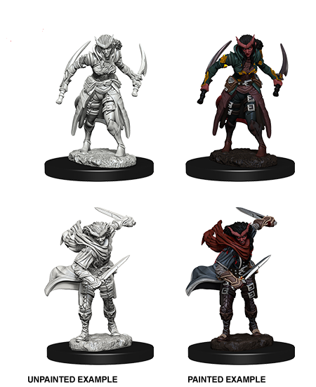 Dungeons & Dragons Nolzur's Marvelous Unpainted Miniatures: Tiefling Female Rogue