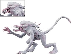 Alien & Predator Classics Neomorph Alien with Retractable Jaw & Baby