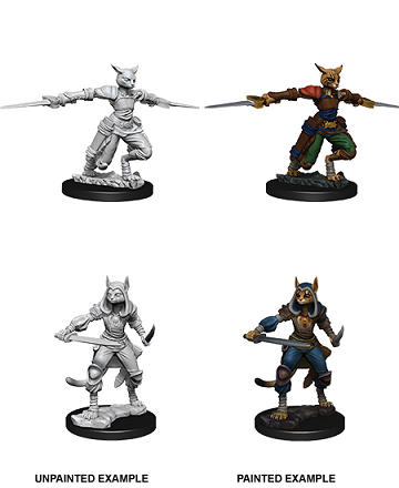 Dungeons & Dragons Nolzur's Marvelous Unpainted Miniatures: Tabaxi Rogue (Female)