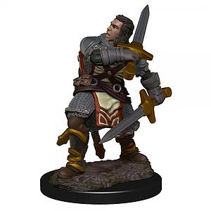 Dungeons & Dragons Icons of the Realms: Human Male Paladin