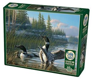 Puzzle: Common Loons
