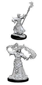 Pathfinder Deep Cuts Unpainted Miniatures: Male Human Sorcerer
