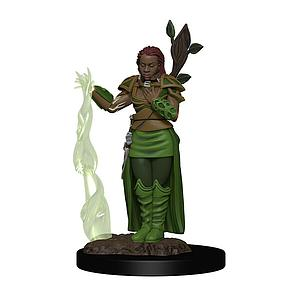 Dungeons & Dragons Icons of the Realms Premium Miniatures: Human Druid (Female)