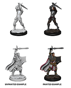 Dungeons & Dragons Nolzur's Marvelous Unpainted Miniatures: Human Paladin (Male)