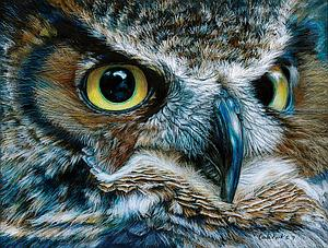 SUNSOUT Puzzle 1000 Piece Dark Owl (71086)