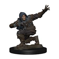 Pathfinder Battles Painted Premium Painted Figure: Rogue Male