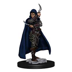Pathfinder Battles Painted Premium Painted Figure: Rogue Female