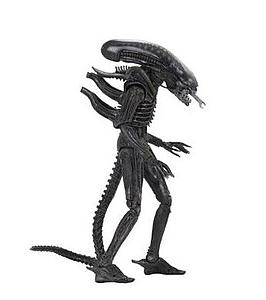 Xenomorph (Regular)