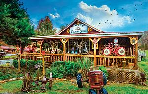 SUNSOUT Puzzle 1000 Piece Pappy's General Store (30146)